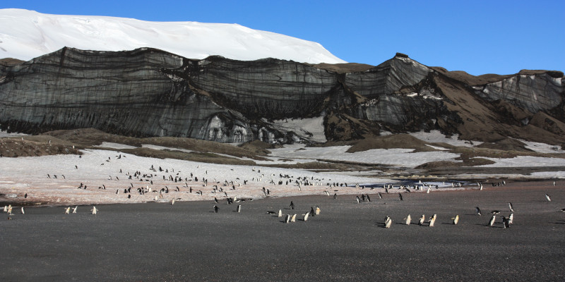 The Antarctic continent is located on a continental plate called the Antarctic Plate.