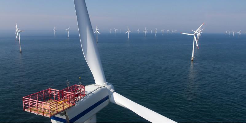 Im Meer steht eine Vielzahl von Windkraftanlagen.
