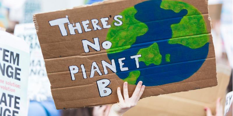 """Bild zeigt im Mittelpunkt ein Pappschild  auf welchem """"There's no Planet B"""" geschrieben steht. Im Hintergrund sieht man weitere Protestschilder."""