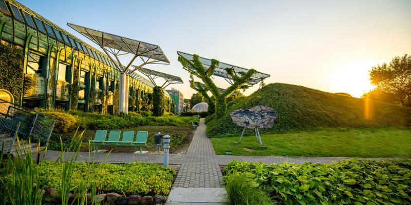 illustierendes Bild, der begrünte Dachgarten der Universität Warschau