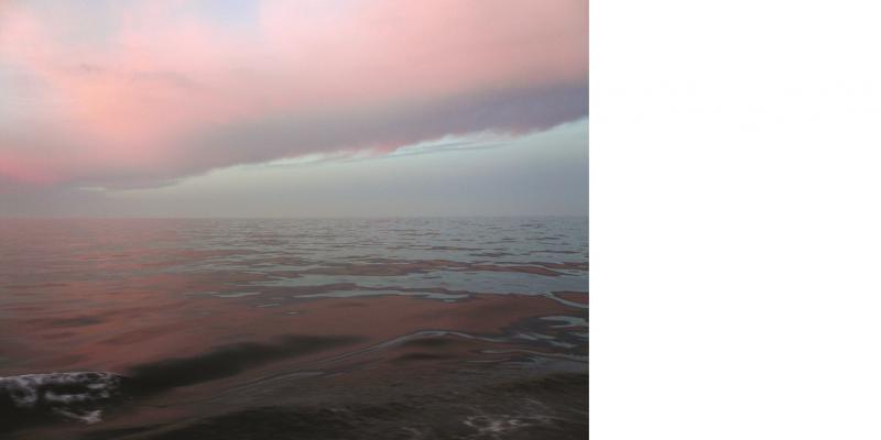 Das Bild zeigt eine leicht bewegte Meeresoberfläche, in der sich die rosa Wolken spiegeln.