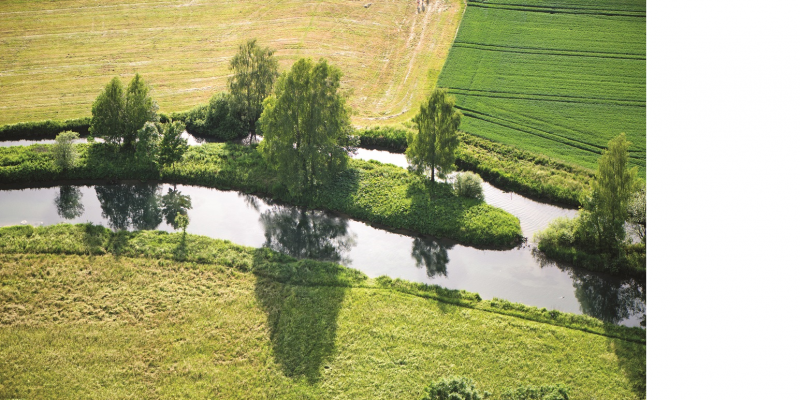 The picture shows a narrow stream flowing through an agricultural area. At the edge of the stream there are individual large trees and some bushes that cast shadows on the water surface.