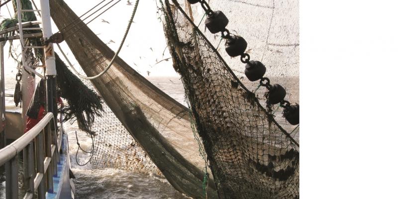 Das Bild zeigt ein Fischerboot auf hoher See. Die Aufnahme wurde von der Reling aufgenommen und ist in ein Fischernetz gerichtet.