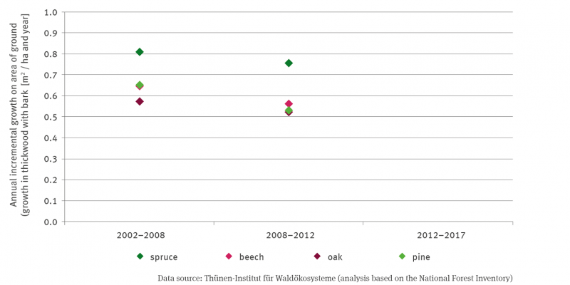 The graph shows points for the annual basal area increment (increment of derb wood with bark) in square metres per hectare and year for spruce, beech, oak and pine for the period 2002-2008 and 2008-2012 respectively. The values for 2002-2008 are 0.81 for spruce, 0.65 for pine, 0.64 for beech and 0.58 for oak; for 2008-2012 0.75 for spruce, 0.53 for pine, 0.57 for beech and 0.53 for oak.