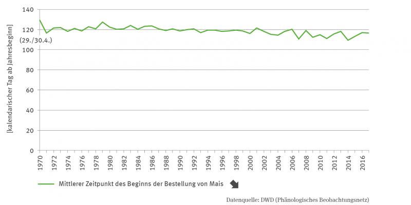 Das Liniendiagramm zeigt den mittleren Zeitpunkt des Beginns der Maisaussaat als Kalendertag von 1970 bis 2017. Die Zeitreihe zeigt einen deutlichen Abwärtstrend mit leichten Schwankungen zwischen den Jahren.