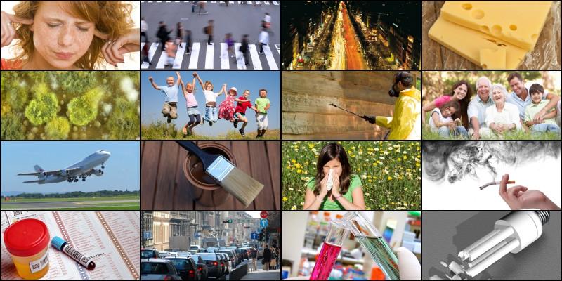 Collage aus 16 Bildern, die Einflussfaktoren aus der Umwelt wie Lärm oder Abgase zeigen