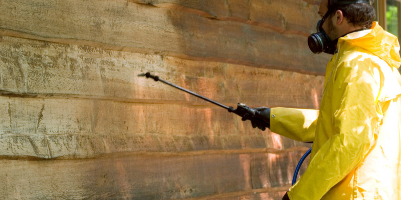 Mann in Schutzkleidung bringt Holzschutzmittel auf einer Holzwand auf