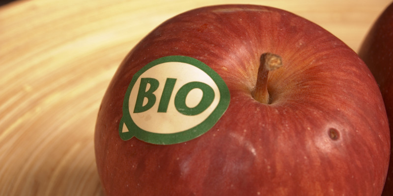 Close-up of an organically grown apple
