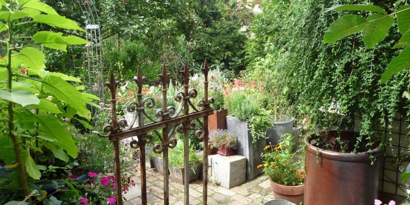 Schmiedeeiserne Tür öffnet sich zum Garten im Berliner Innenhof