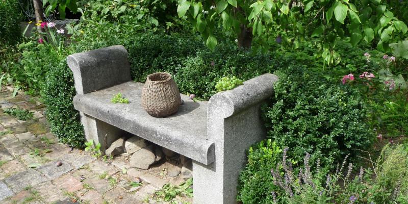 Von Pflanzen umringte Steinbank