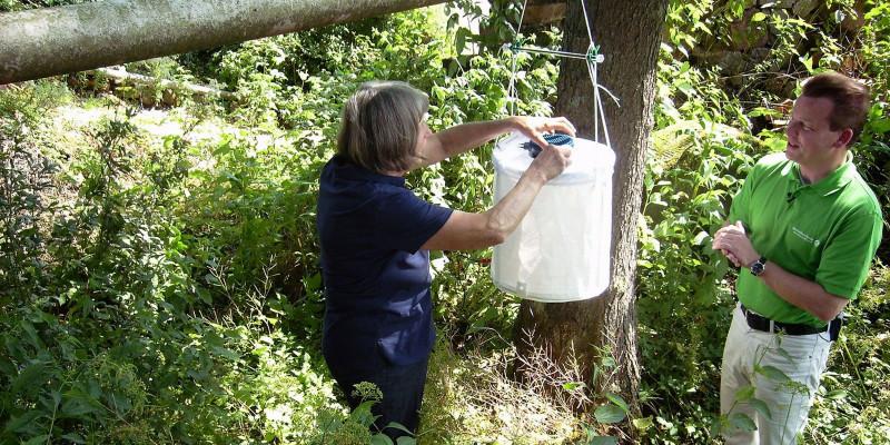 Personen beim Monitoring im Wald