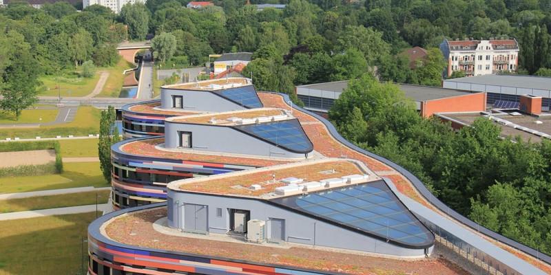 Drei moderne Häuserdächer mit Begrünung