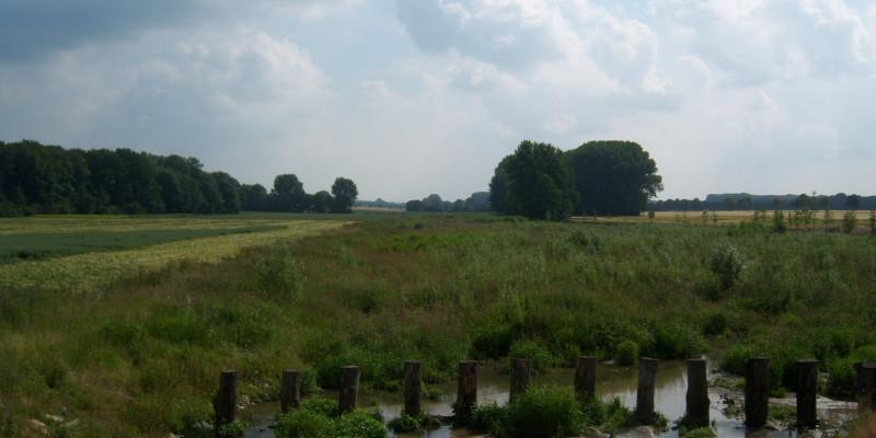 Entwicklungsplanung Werse - Nach Ausbau, Blick in die Aue, Standpunkt Hochwasserrückhaltebecken (02-07-2013)