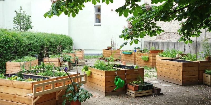 Bepflanzte Hochbeete im urbanen Raum.