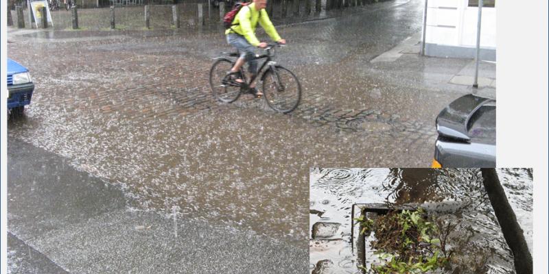 Ein Mann in einem hellgrünen Pullover und mit Rucksack auf dem Rücken fährt mit seinem Fahrrad auf einer Straße mit Pflastersteinen ungeschützt durch besonders starken Regen. Im Hintergrund sieht man einen Ausschnitt von einem Backsteingebäude mit Fahrrädern und Fahrradständer im Vordergrund, begrenzt durch Natursteinpoller zur Straße hin. Die Straßen werden durch Bäume und Autos gesäumt. Im Vordergrund rechts unten sieht man das Bild eines vom Regen mit Pflanzenresten zugeschwemmten Gulli.