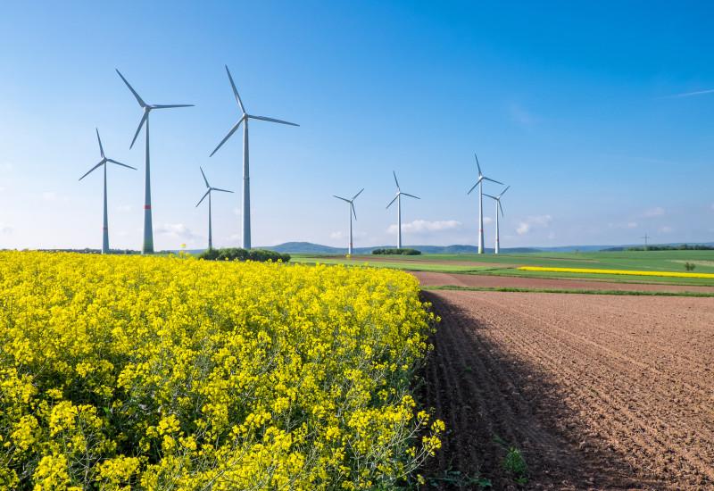 Windräder umgeben von Ackerflächen.