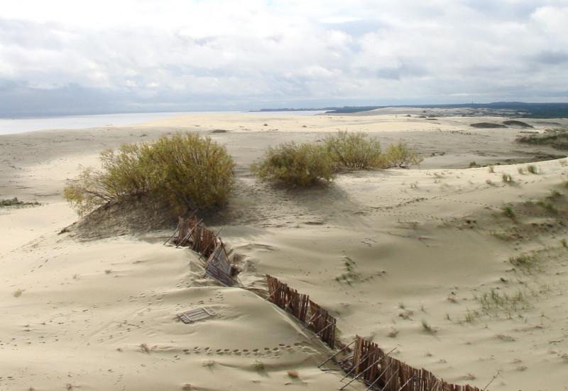 Bild weitläufiger Dünen auf der Kurischen Nehrung