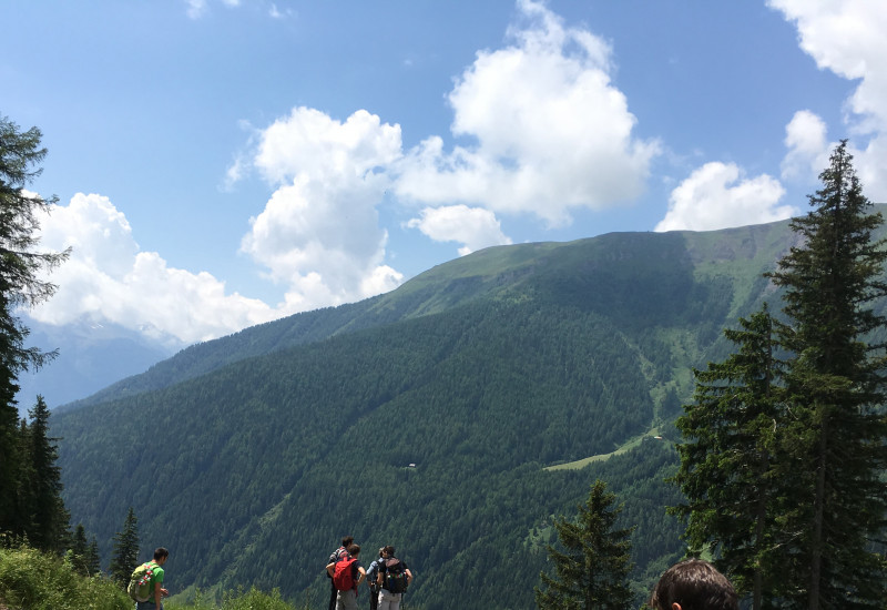 We are Alps 2016