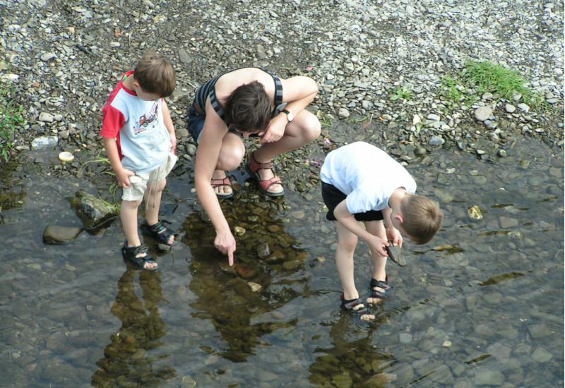 Foto: Eine erwachsene Person und zwei Kinder, die mit den Füßen im Wasser direkt am Ufer der Ruhr stehen und die Steine im Gewässer betrachten.
