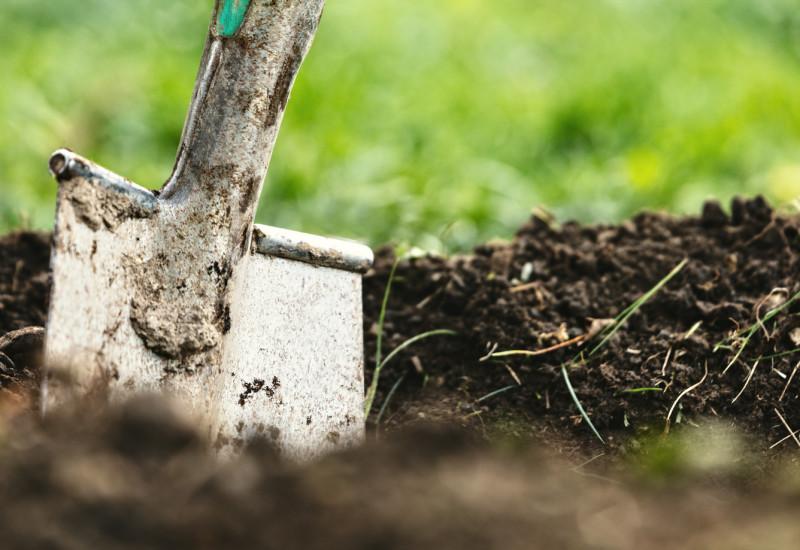 Den Boden schützen und erhalten