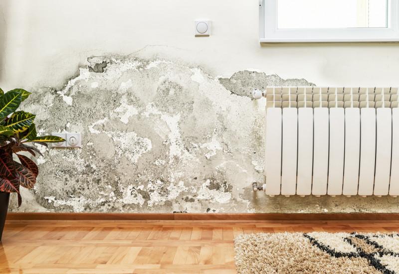 schimmel im wohnzimmer gesundheit schimmel an der decke beseitigen anleitung u tipps vom maler. Black Bedroom Furniture Sets. Home Design Ideas