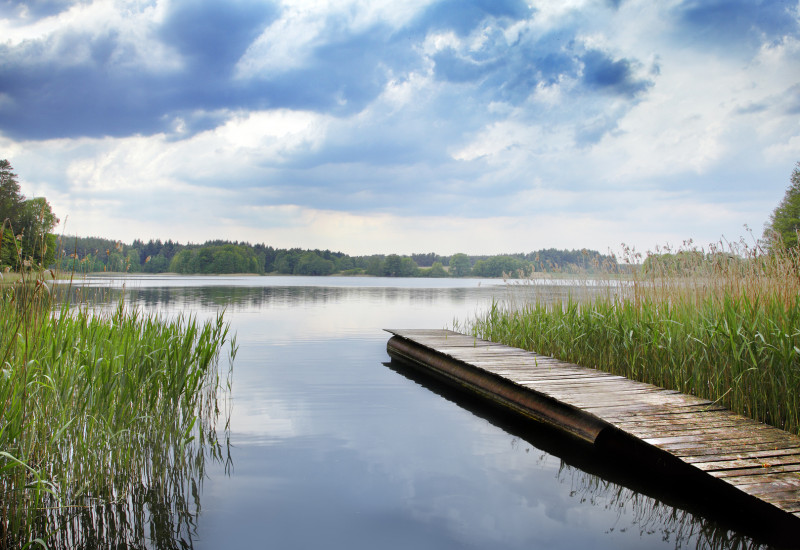 Lake in Brandenburg