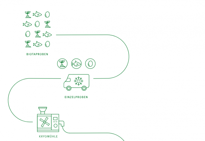 Screenshot: Scrollytelling Umweltprobenbank