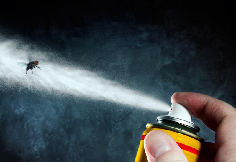 Eine Fliege wird mit Insektenspray angesprüht