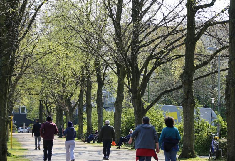Menschen gehen in einem Park spazieren.