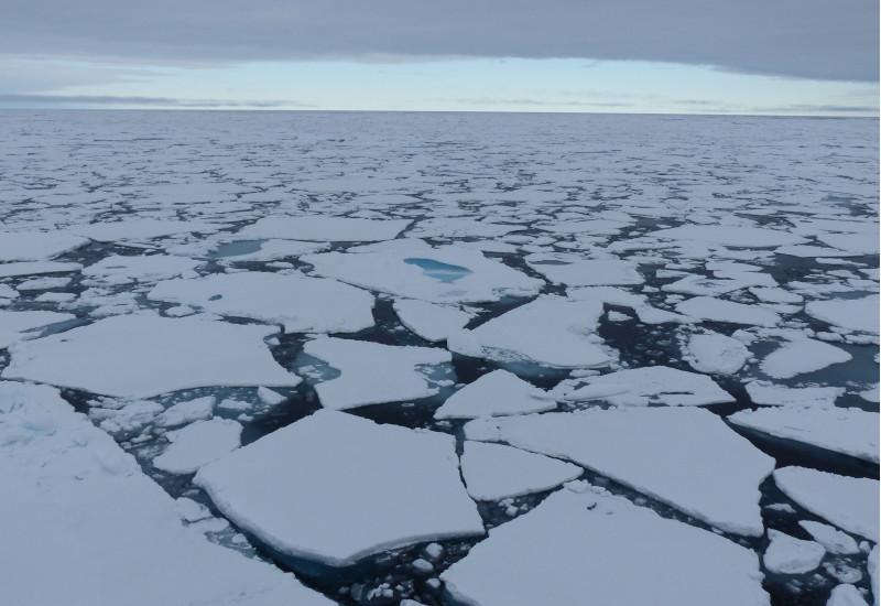Eisschollen in der Arktis.