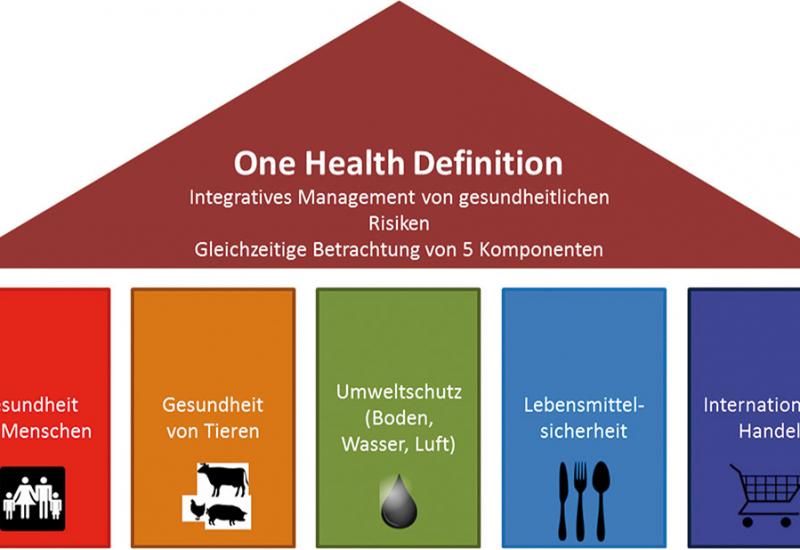 Das Schema stellt die Komponenten des Gesundheitsmanagements als fünf Säulen dar: 1. Gesundheit von Menschen, 2. Gesundheit von Tieren, 3. Umweltschutz (Boden, Wasser, Luft), 4. Lebensmittelsicherheit, 5. Internationaler Handel. Diese Säulen tragen das Dach, welches die One-Health-Definition beinhaltet: Integratives Management von gesundheitlichen Risiken, gleichzeitige Betrachtung von fünf Komponenten.