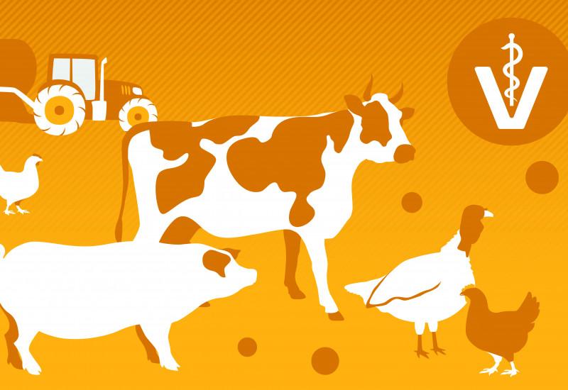 Zeichnung mit folgenden Motiven: Traktor mit Güllebehälter und Schleppschlauchvorrichtung zur Gülleausbringung, Veterinärzeichen, Rind, Schwein, Pute, Hühner