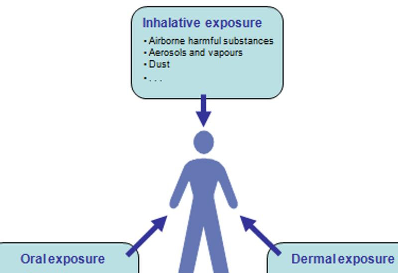 diagram presenting oral, dermal and inhalativ exposure to man