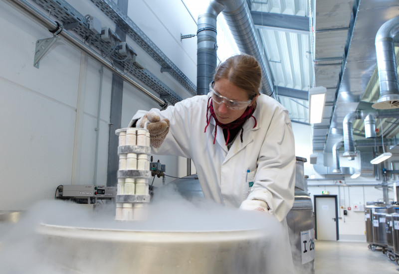 photo of a women working in the Environmental specimen bank