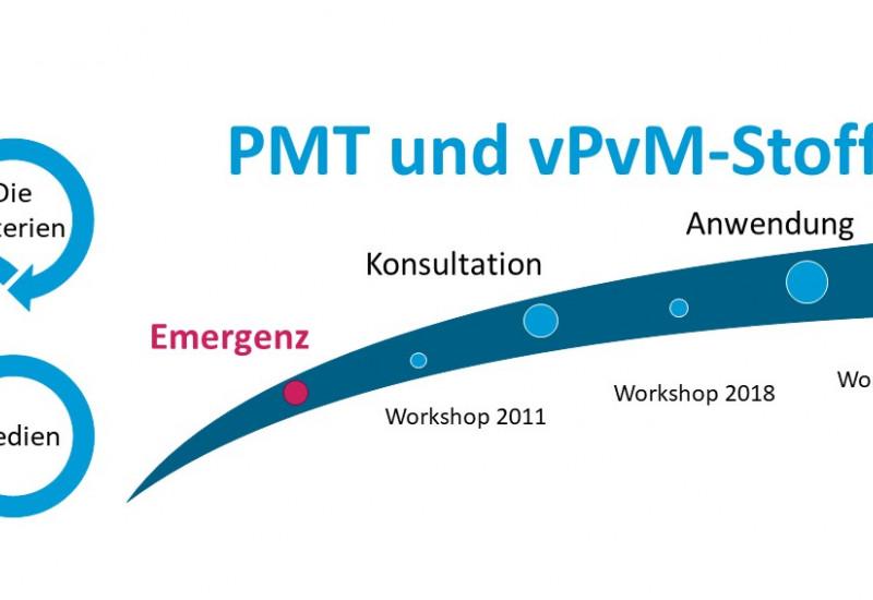 Emergenz der PMT/vPvM-Kriterien