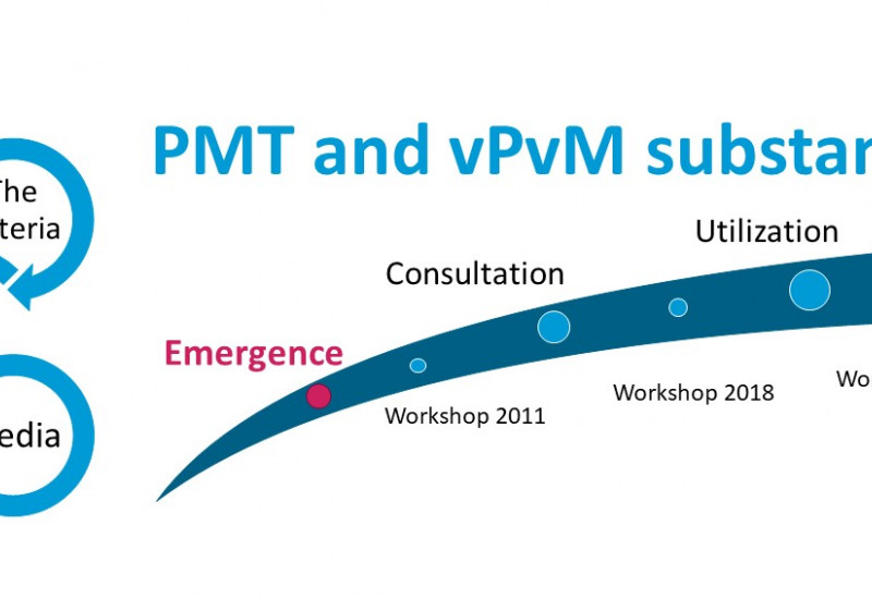 Emergence of the PMT/vPvM criteria