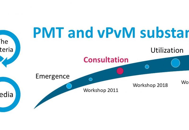 Public consultation on the PMT/vPvM criteria