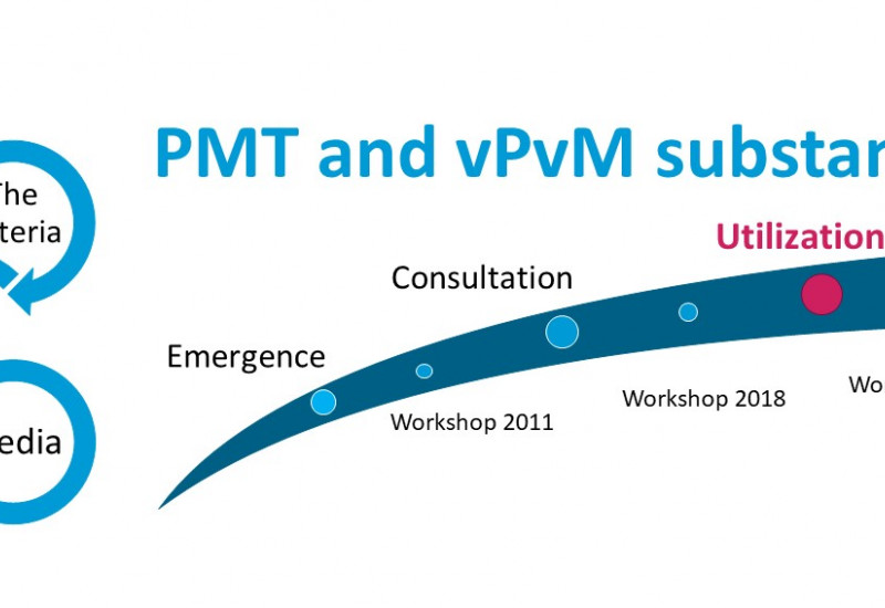 Utilization of the criteria to identify PMT/vPvM substances