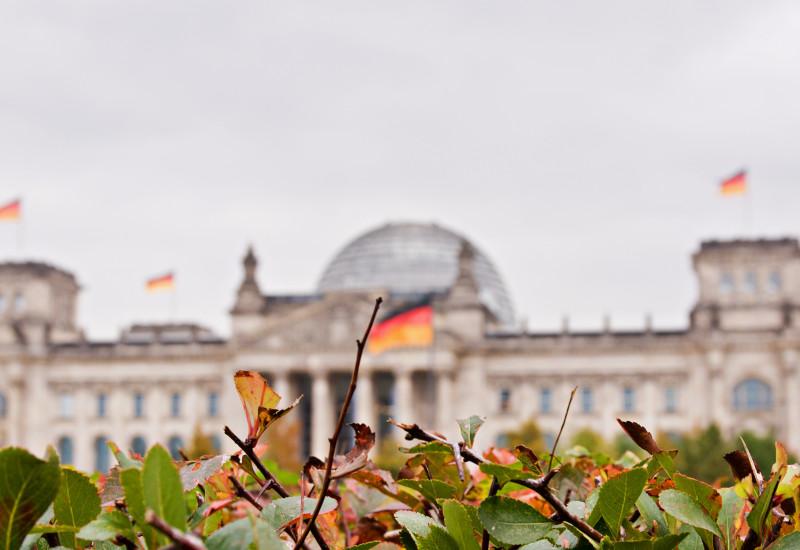 Reichstag unscharf im Hintergrund vor grünem Gebüsch