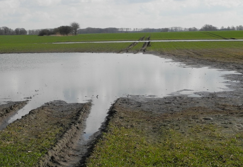 Eine tiefe Fahrspuhr auf einem Ackerboden mit oberflächlichem Stauwasser