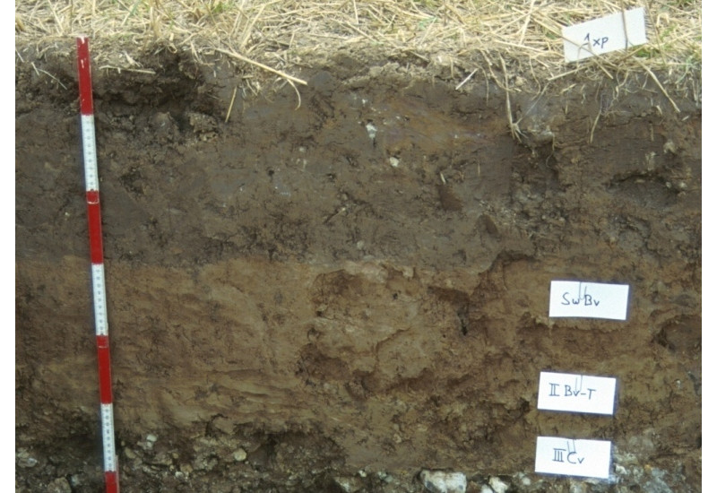 A soil profile with differently coloured layers of brown earth.