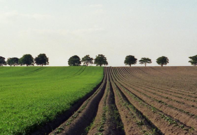 ungegliedertes Feld bis zum Horizont, Ackerfurchen in nacktem Boden