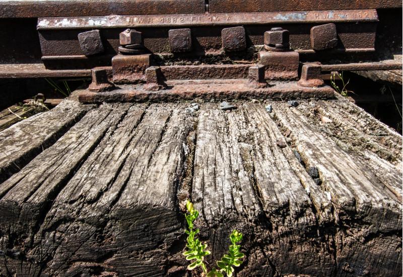 alte Holz-Bahnschwelle mit tiefen Rissen