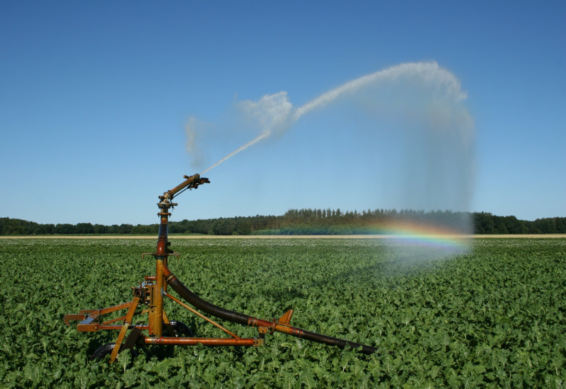 irrigation of a field