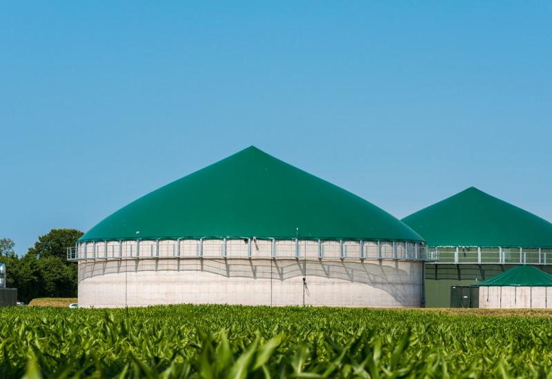 Biogasanlage, im Vordergrund ein Maisfeld