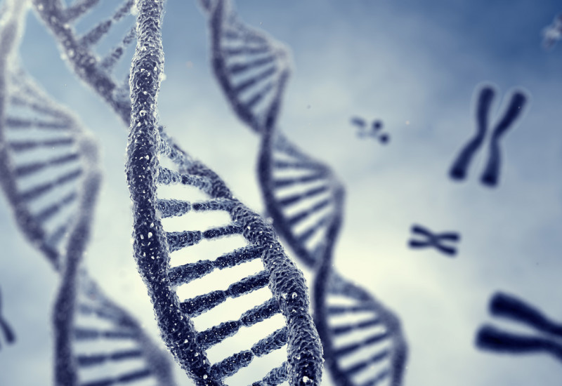 DNA stilisiert unter dem Mikroskop betrachtet