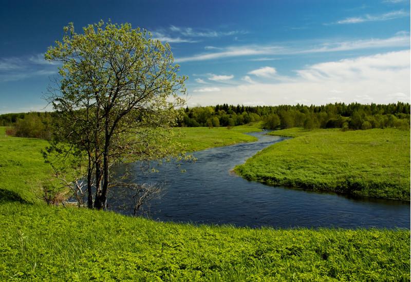Flussbiegung in einer Landschaft aus Wiesen, Feldern und Wäldern, an der Flussbiegung steht ein Baum