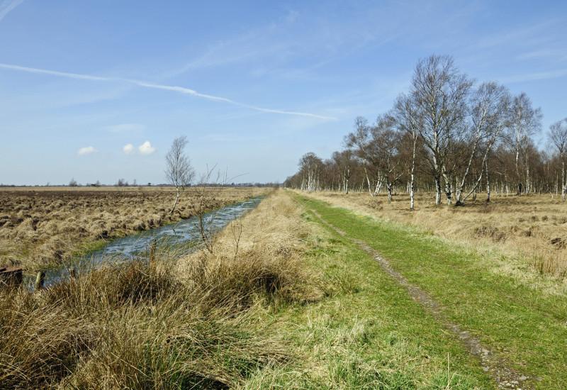 drainage channel through a peatland