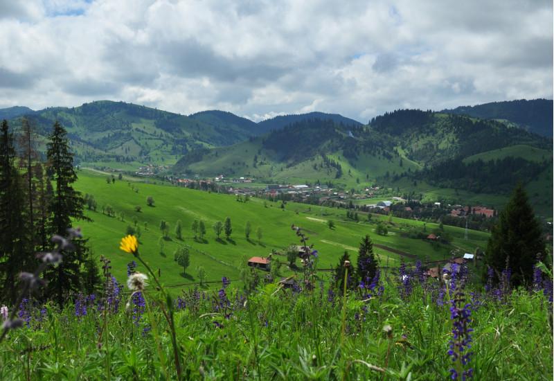 Berglandschaft mit blühenden Wiesen, im Tal ein Dorf