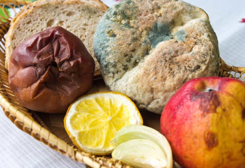 a basket with a mouldet bread roll, two rotten apples and a dried out lemon